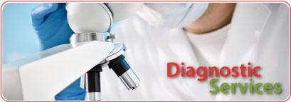 Diagnostic Services text