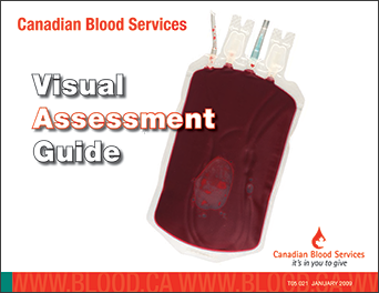 Visual Assessment Guide