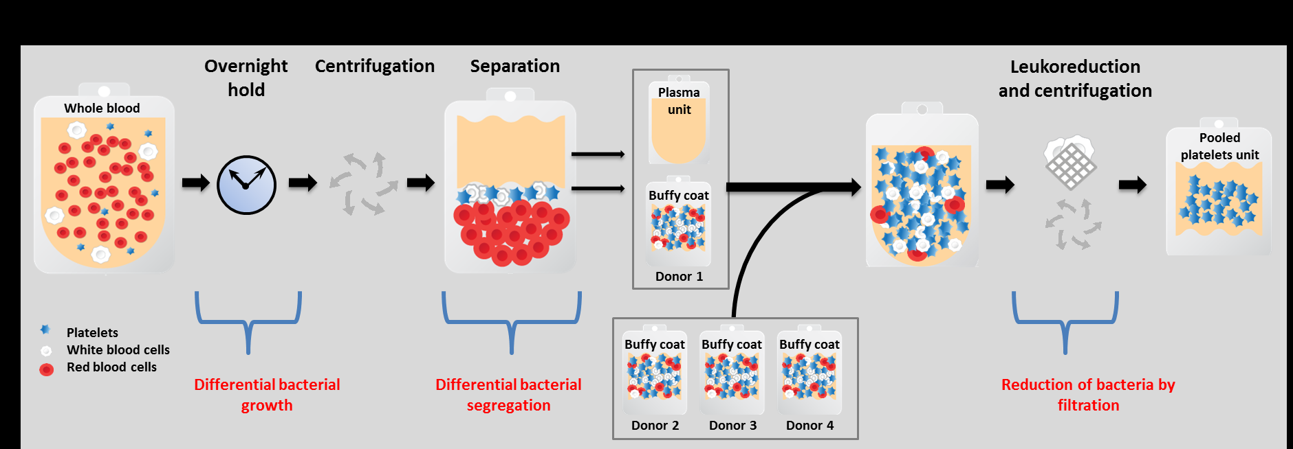 bacterial behaviour during buffy coat platelet production