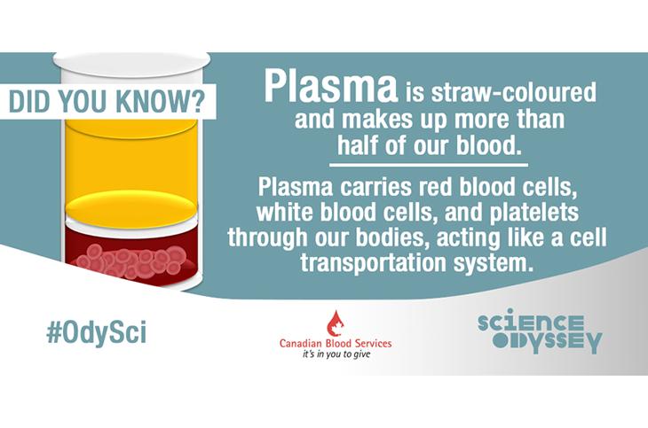 science odyssey week, plasma