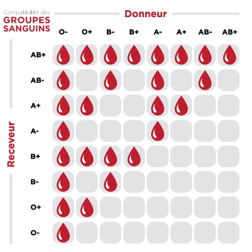 le sang c est quoi soci t canadienne du sang. Black Bedroom Furniture Sets. Home Design Ideas