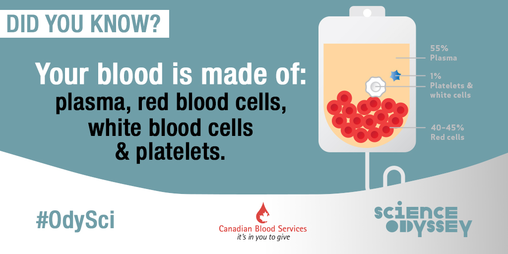Blood is made up of  plasma, platelets, white blood cells and red blood cells.