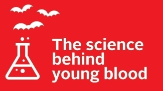 "A graphic of a beaker with bats flying out of it, and the words ""The science behind young blood"""